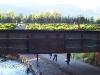 portland2005 087