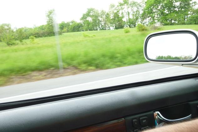 wpid-P1060654-2011-05-24-04-52.jpg