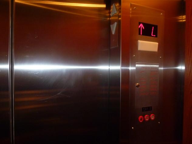 wpid-P1090623-2012-02-19-02-50.jpg
